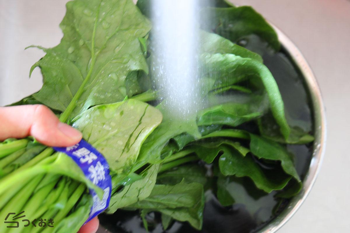 ほうれん草のゆで方/保存/食べ方のまとめの洗い方その2