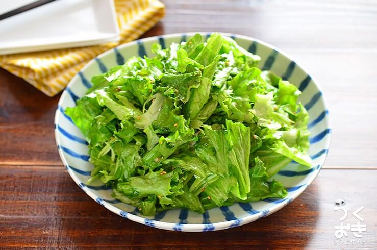 チョレギサラダの料理写真