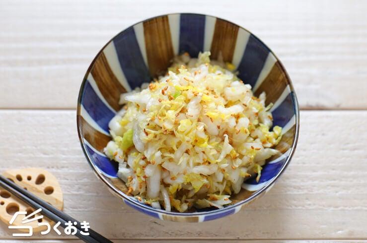 白菜のごまサラダの料理写真